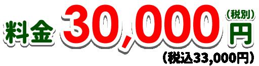 料金30,000円(税別)